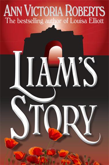 Liam Story Book Cover 2012